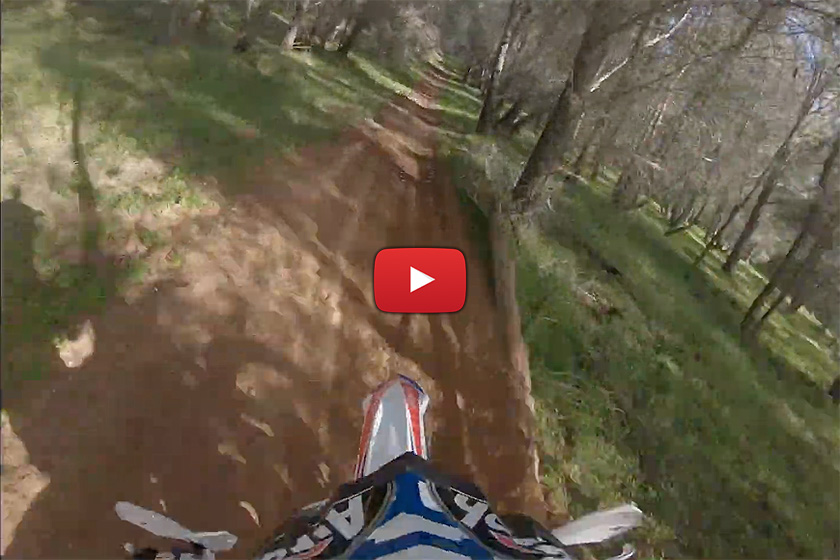 POV: Brad Freeman pinned between the trees – Beta 300cc two-stroke