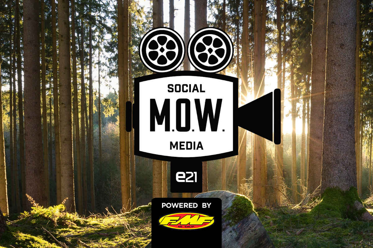 Social selection – CW 38
